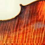 Violin 6 4 29 17